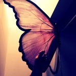 Sinful Sunday, Week 229: Butterfly Wing
